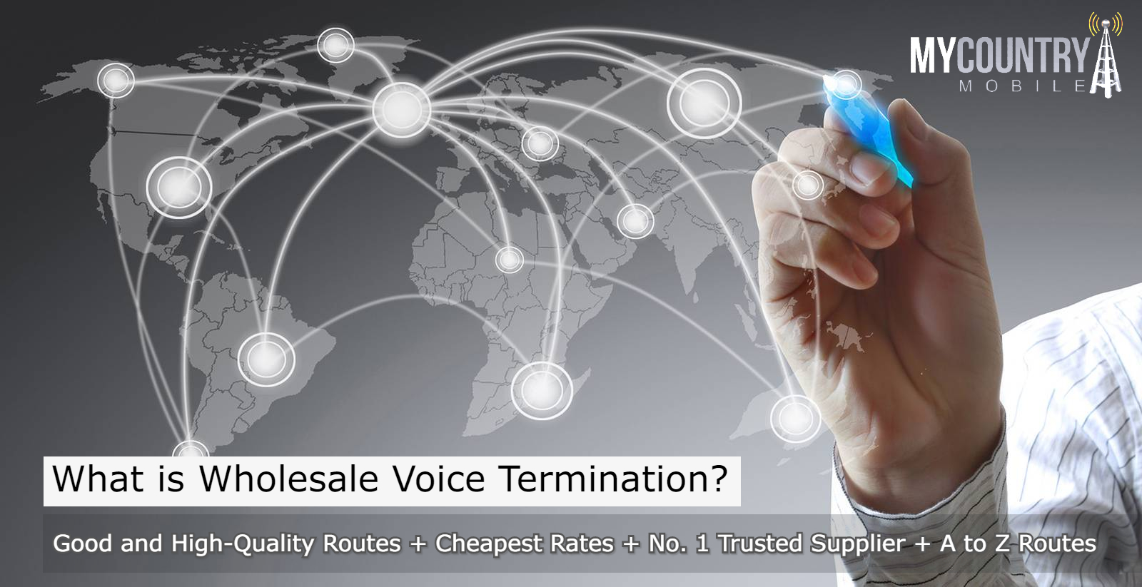 What is the wholesale voice termination