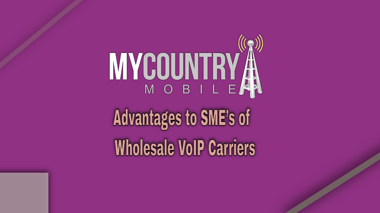 Advantages to SME's of Wholesale VoIP Carriers-my country mobile