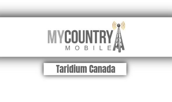 taridium canada
